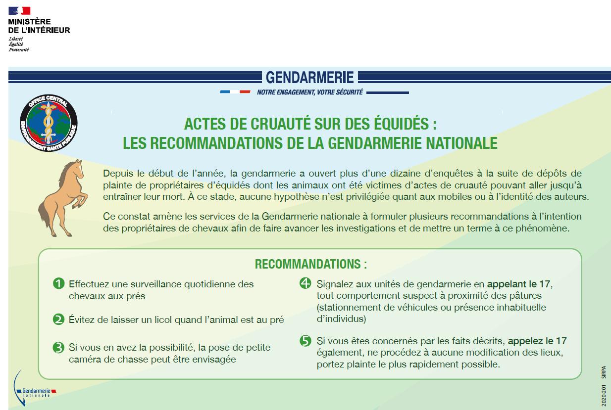 mutilations équidés CDE 17 gendarmerie nationale